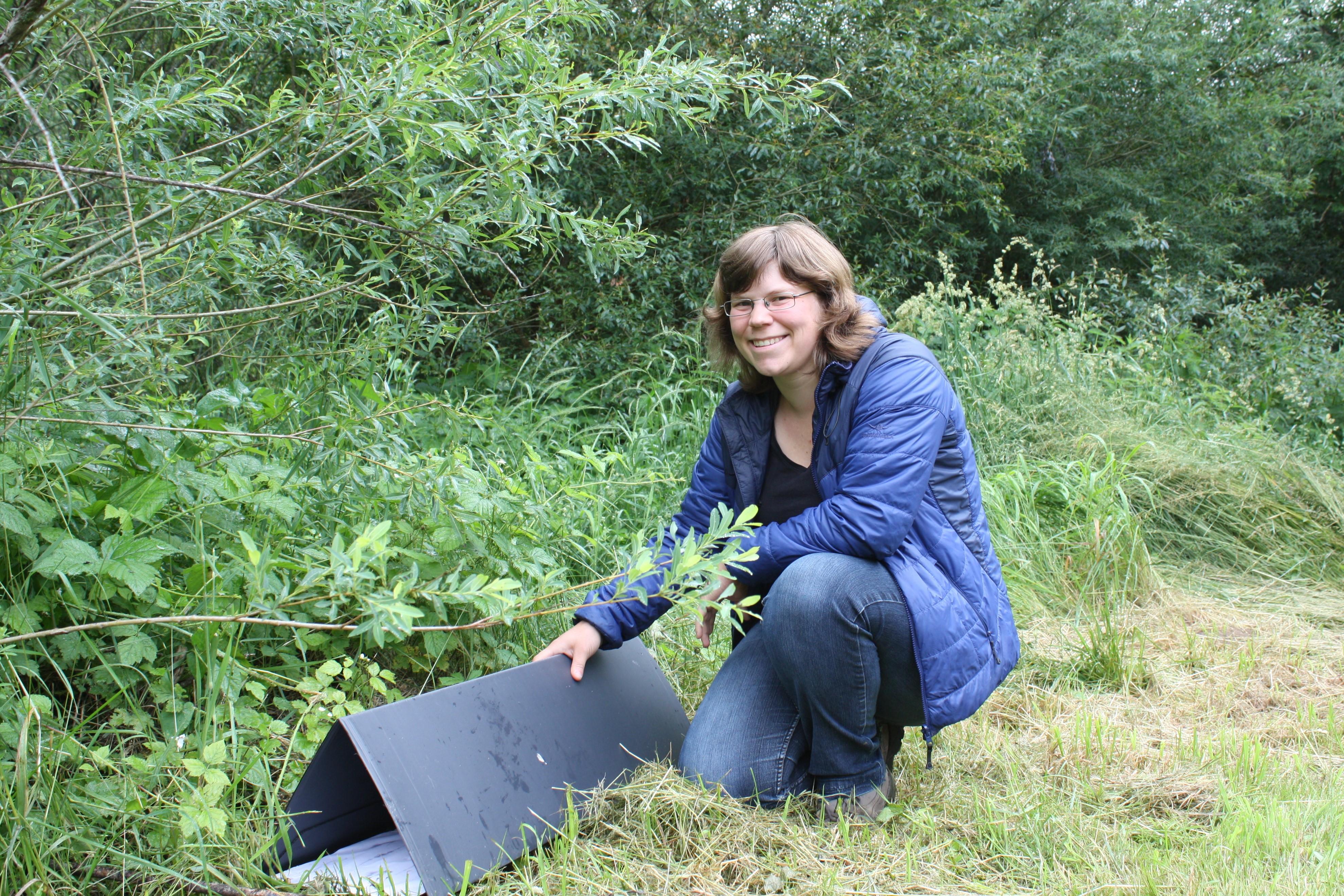 Bettina Erne présente un tunnel à traces pour les hérissons