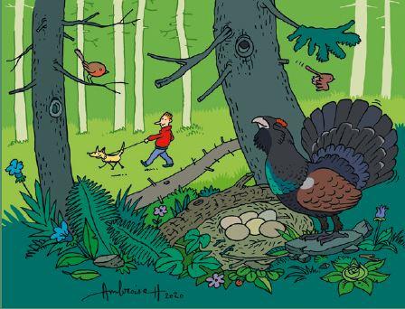 Dessin illustrant la nécessité de tenir son chien en laisse en forêt pour ne pas déranger la faune sauvage.