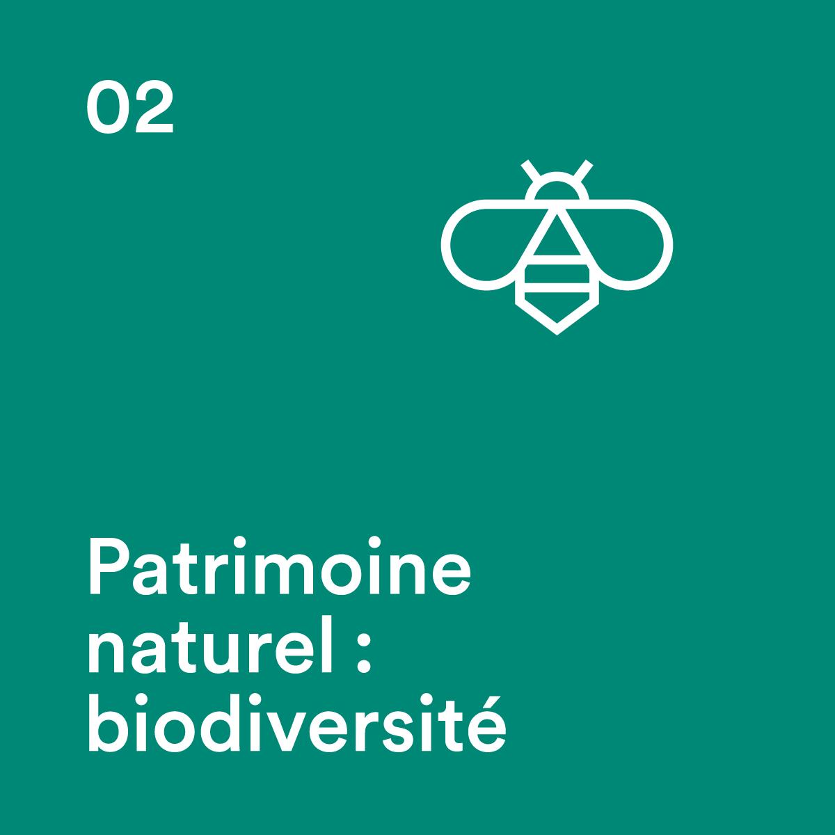 Biodiversité en village